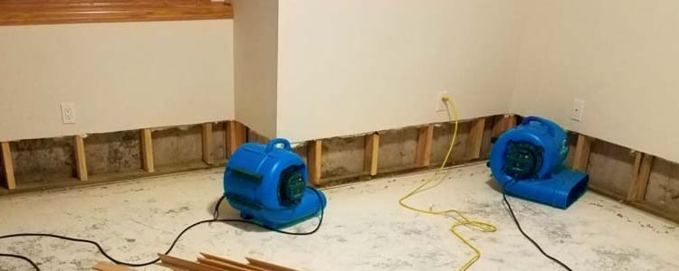 Best Flood Damage Restoration Doncaster